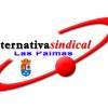LA FEDERACIÓN DE LAS PALMAS DE ALTERNATIVASINDICAL SE MANIFIESTA ANTE EL CABILDO EN CONTRA DE LA CONTRATACIÓN DE EMPRESAS PIRATAS