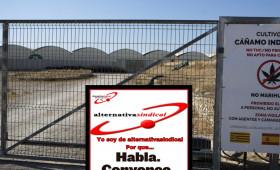 alternativasindical INTERPONE DENUNCIA ANTE LA INSPECCIÓN DE TRABAJO DE ZARAGOZA POR EL INCUMPLIMIENTO DE LA LPRL Y OTRA DENUNCIA POR INTRUSISMO CONTRA EL DUEÑO DE LA FINCA DE LA LOCALIDAD DE PLEITAS DONDE SE PRODUJO EL TRAGICO ASESINATO DEL HOMBRE QUE REALIZABA FUNCIONES DE VIGILANCIA Y SEGURIDAD