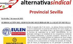 SUBROGACIÓN DEL SERVICIO DE SEGURIDAD DE LA AEAT EN SEVILLA