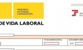 Comunicación de Vida Laboral y Bases de Cotización a los trabajadores