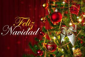 Fotos Profesionales De Navidad.Nuestra Felicitacion De Navidad Felices Fiestas A Todos Los